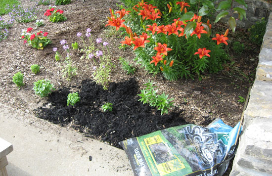 Mulch in Garden